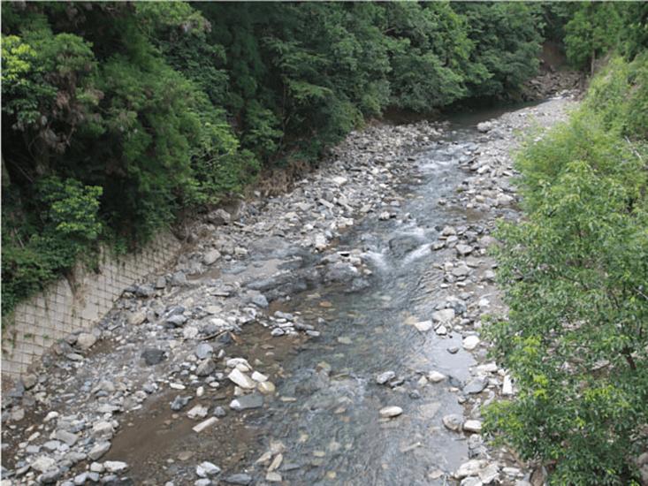 1408_kamogawa02