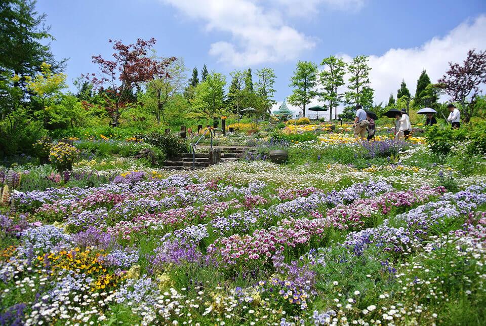 gardenmuseum05