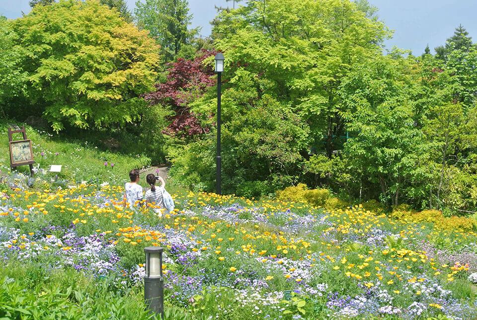 gardenmuseum19