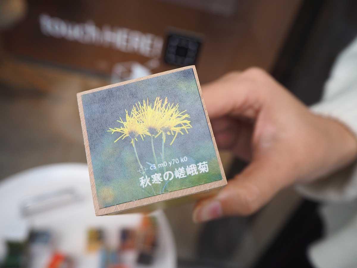timedou-taiwan3