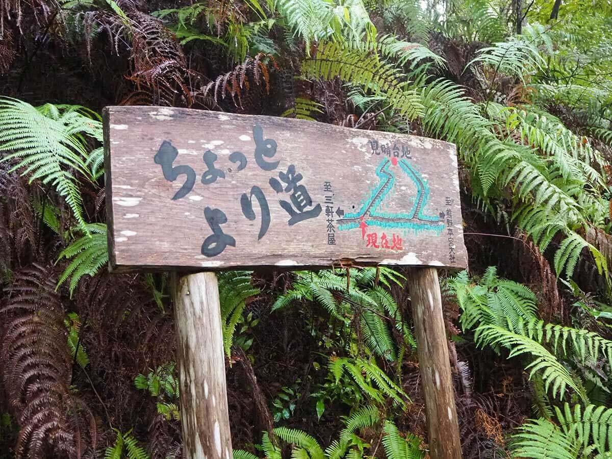 kumanokodou19