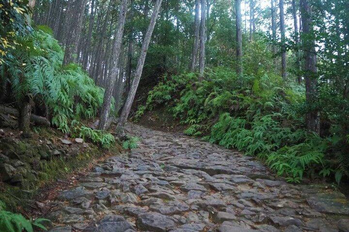 パワースポットとしても有名な世界遺産・熊野古道を歩いてみた!