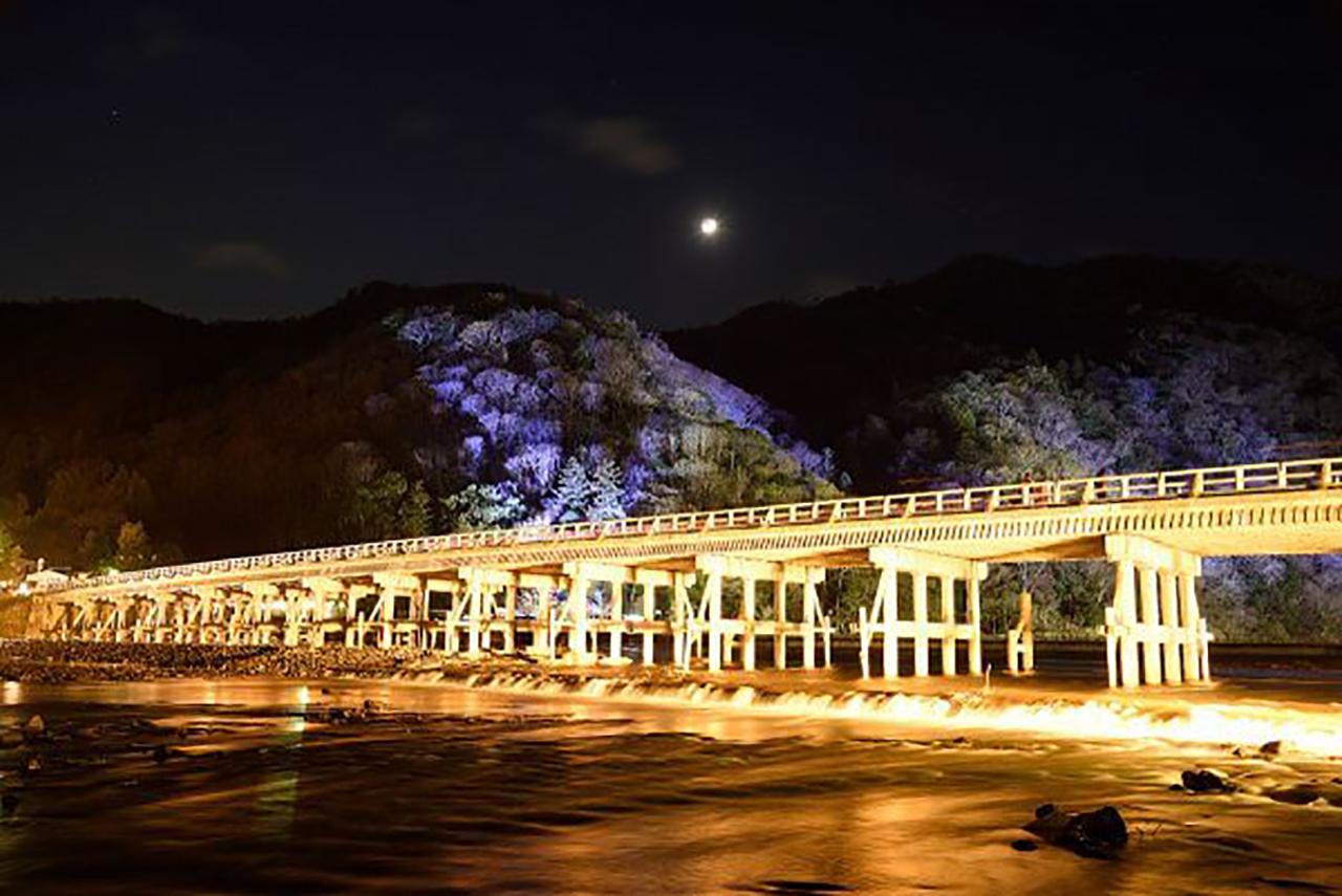 写真提供/京都・花灯路推進協議会(渡月橋ライトアップ)