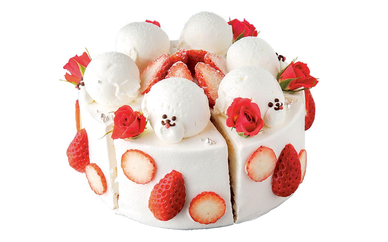 パティシエの店長が飼っている犬がモデルとなった、ビションフリーゼの苺ショートケーキ 1ピース594円。ケーキはすべてテイクアウトできる