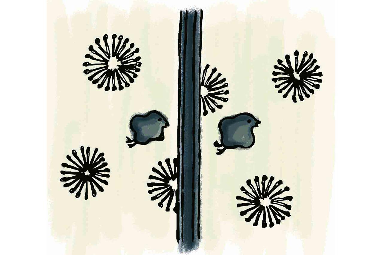 坂本龍馬が利用したお座敷は、縁起の良い南天・竹・松の天井、京唐紙の襖が美しい。