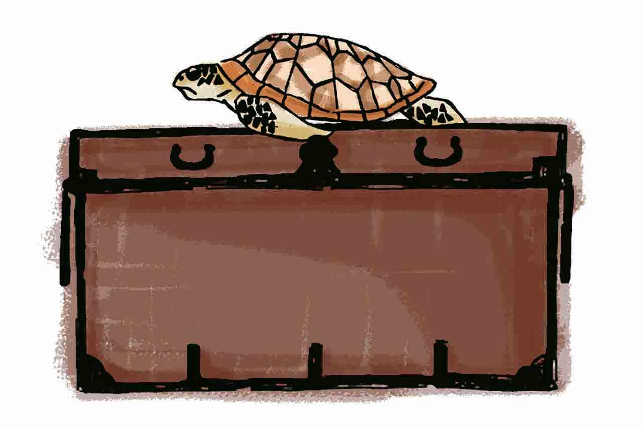 六代目の妻の嫁入り道具の衣装箱。上の大きな亀はお金を持たず来店した常連さんの置き土産。