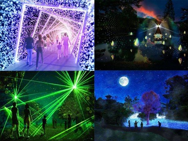 rurikei-illumination2