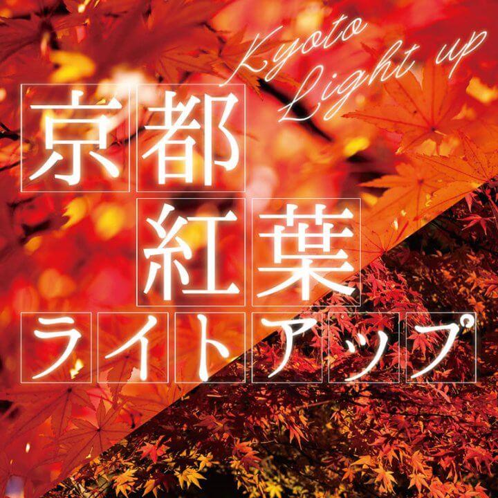 京都 紅葉ライトアップ 外せない14選【2019秋】