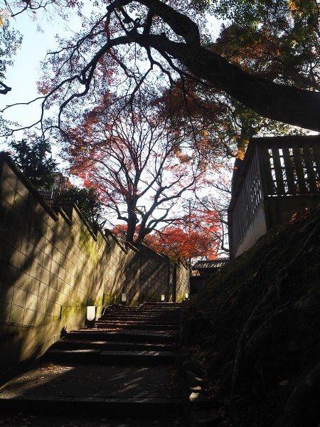 1120_kouyou_arashiyama_01