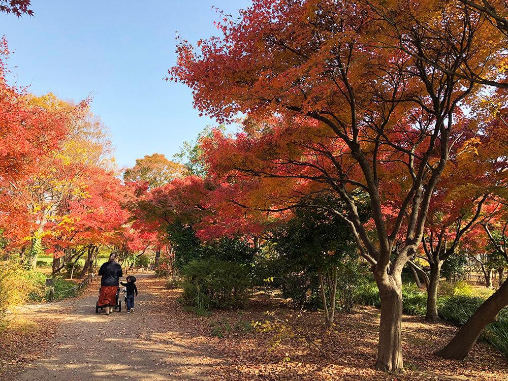 umekoji_kouyo_04_06
