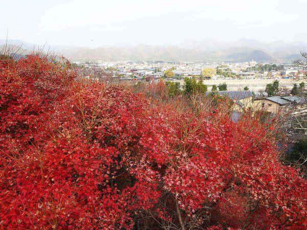 1130_kouyou_arashiyama04