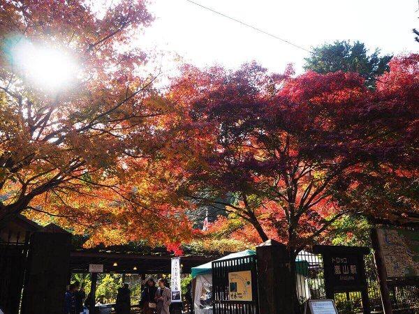 1130_kouyou_arashiyama10