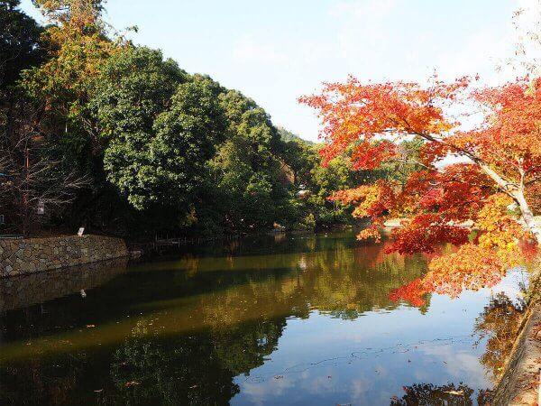 1130_kouyou_arashiyama14
