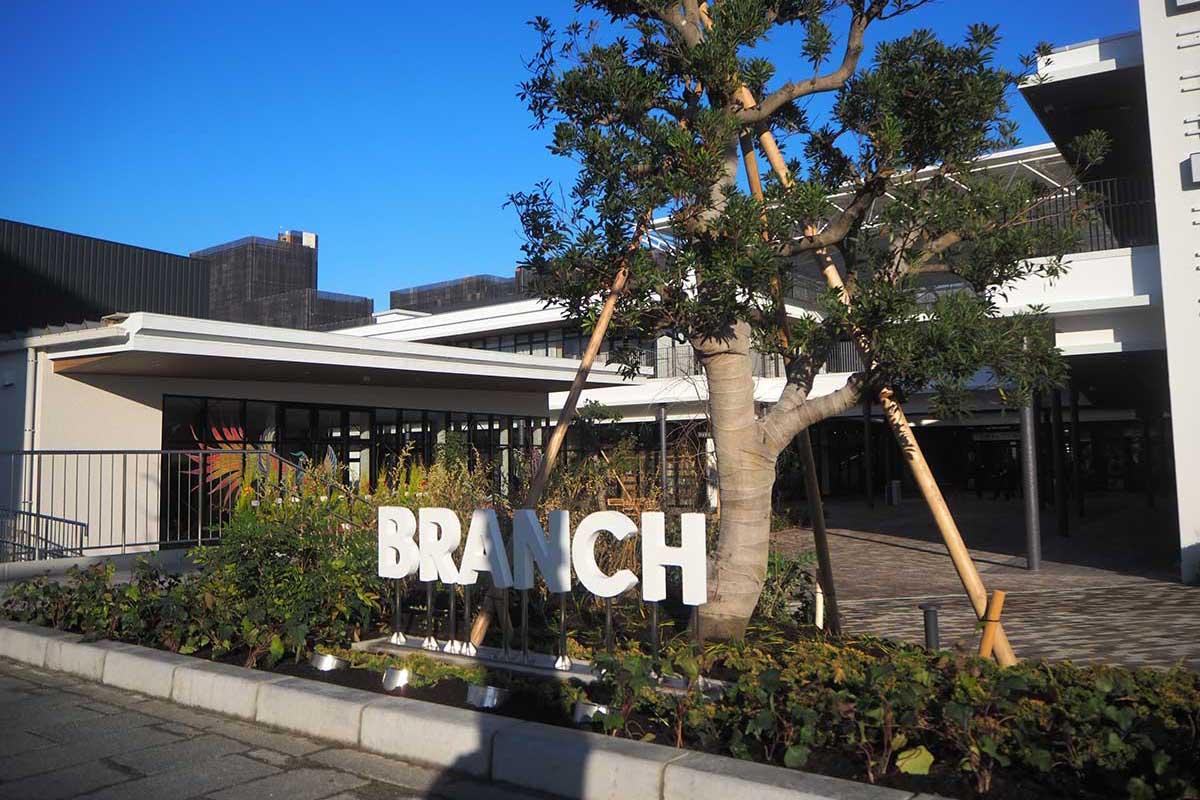 branch_2