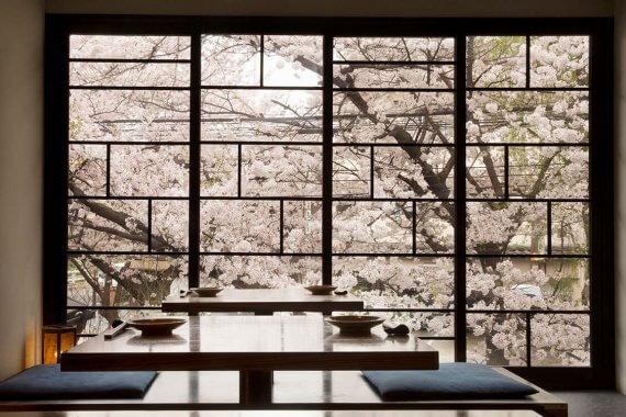 京都・桜の見える店