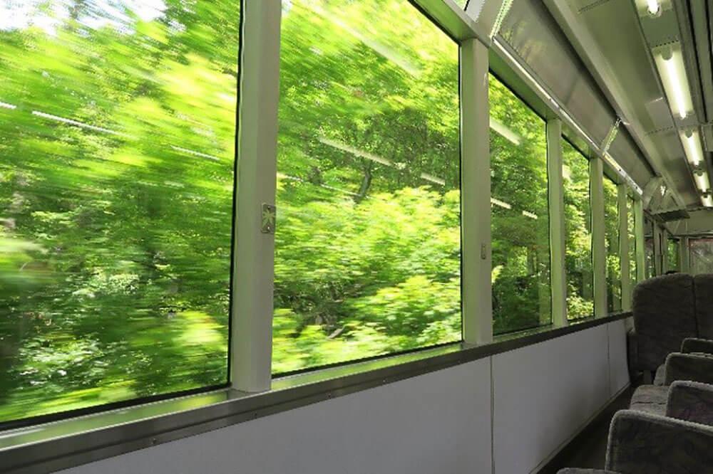 叡山電車「青もみじ新緑の徐行運転」が絶賛運行中!青もみじのトンネルを抜けて洛北へ