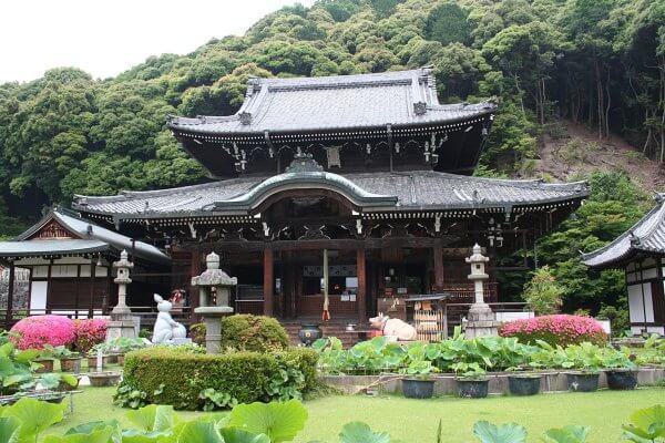 mimurotoji201224